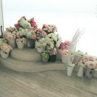 flowerback